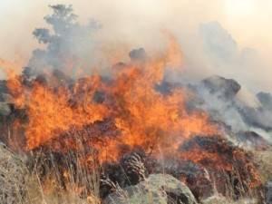 Hasan Dağı'nda orman yangını - Aksaray