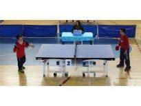 Küçükler Masa Tenisi Turnuvası Sona Erdi