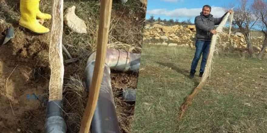 Karaman'da İçme Suyu Hattından 4 Metrelik Ağaç Kökü Çıktı