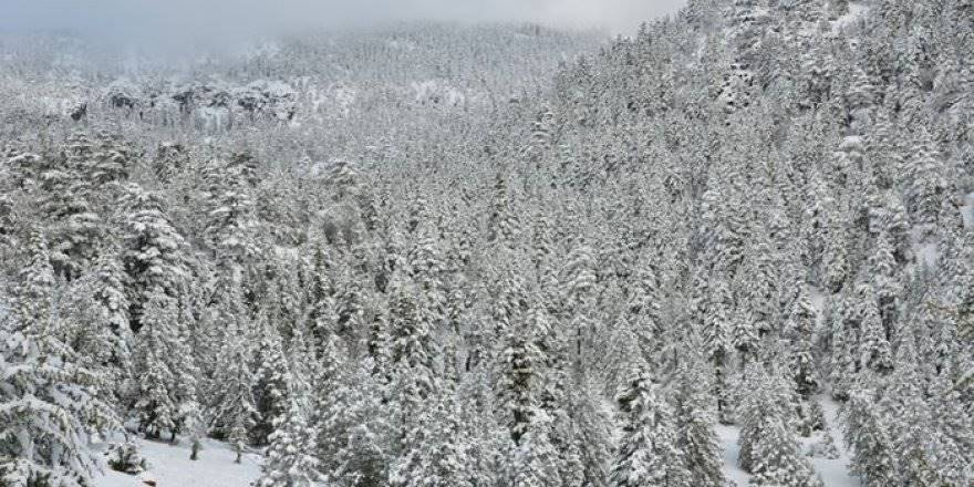 Antalya'da Kar Manzaraları