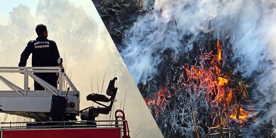 Antalya'da Korkutan Sazlık Yangını
