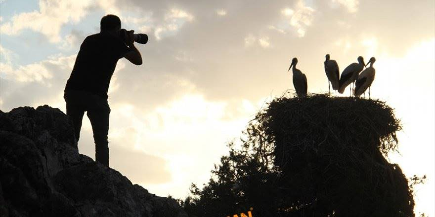 Konya'da Leylekler Vadisi'nde Kartpostallık Görüntüler