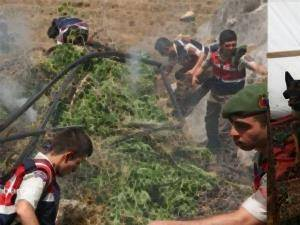 Karaman'da Jandarma Ekiplerinden Uyuşturucu Operasyonu