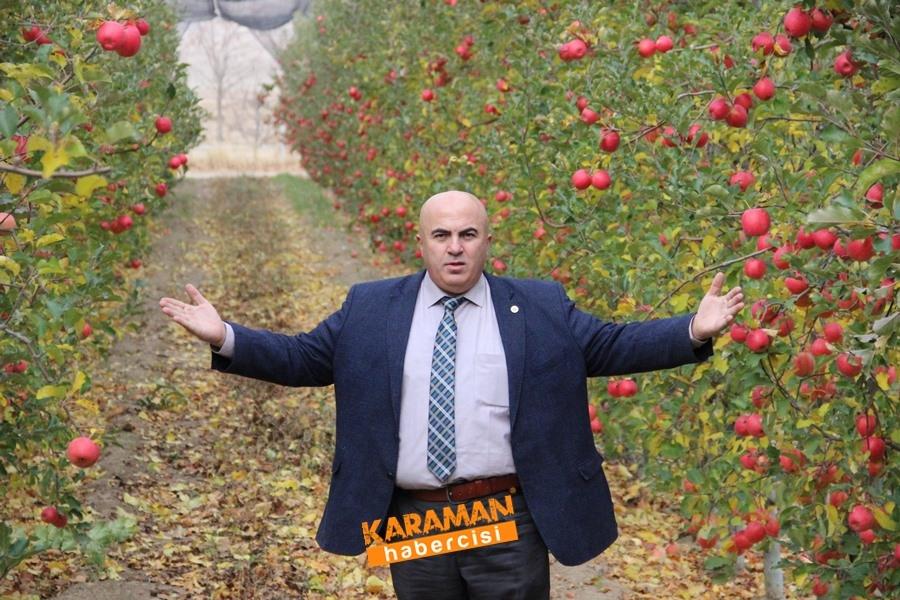 Karamanlı Elma Üreticisinin Yüzü Gülecek mi? 1
