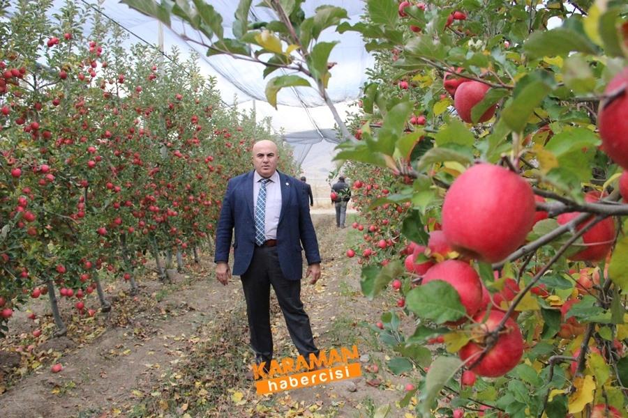 Karamanlı Elma Üreticisinin Yüzü Gülecek mi? 12