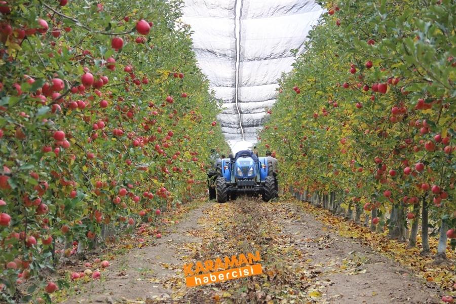Karamanlı Elma Üreticisinin Yüzü Gülecek mi? 13