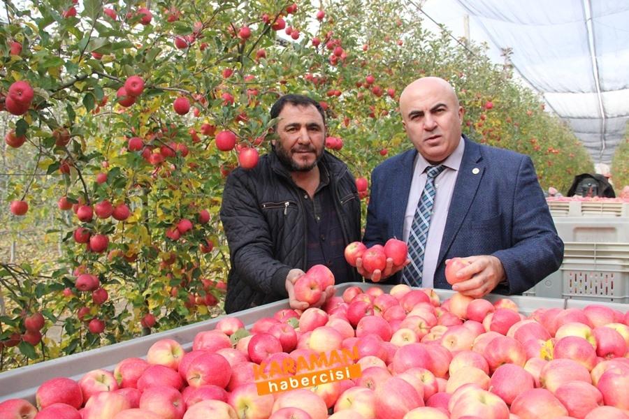 Karamanlı Elma Üreticisinin Yüzü Gülecek mi? 4