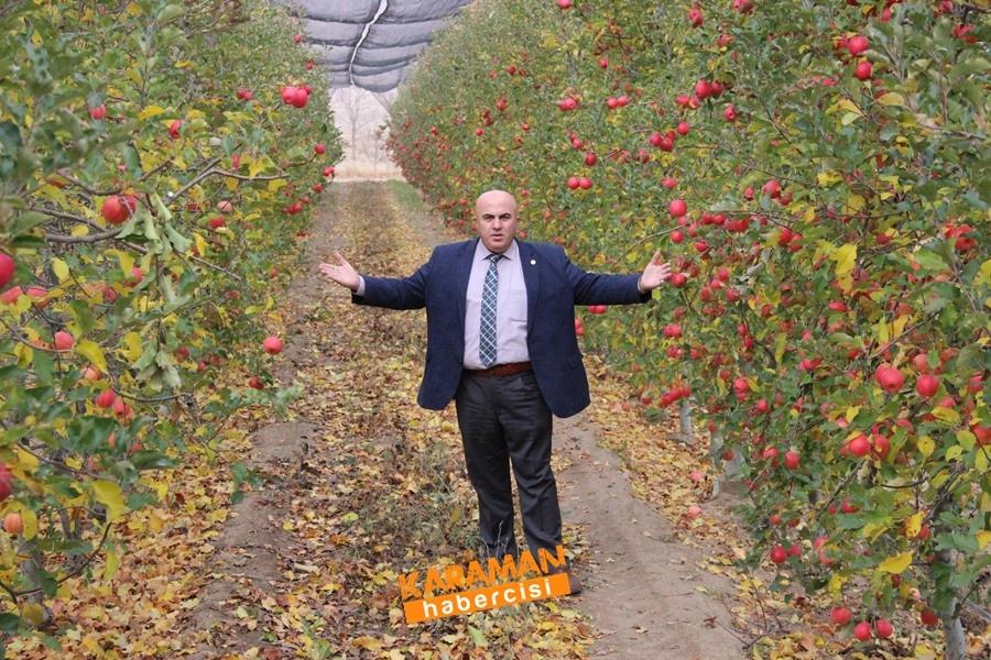 Karamanlı Elma Üreticisinin Yüzü Gülecek mi? 9