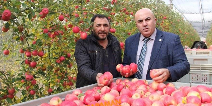 Karamanlı Elma Üreticisinin Yüzü Gülecek mi?