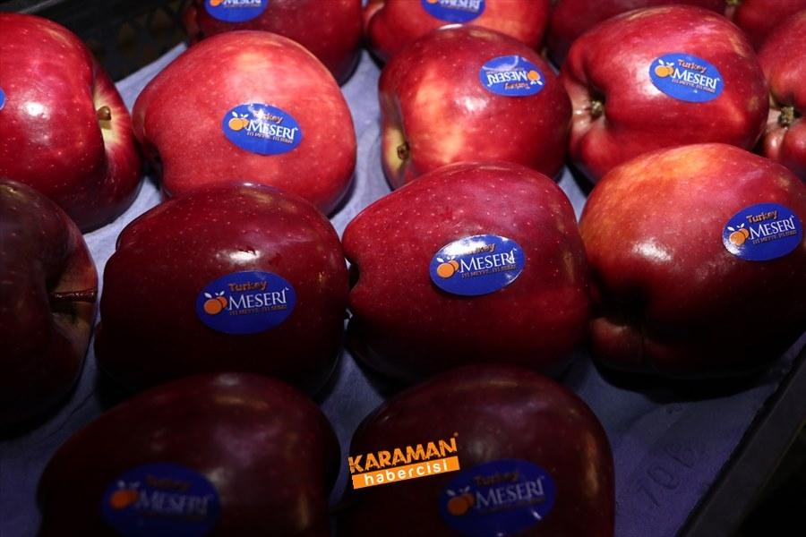 Karaman'ın Elması Soğuk Hava Depolarında 10