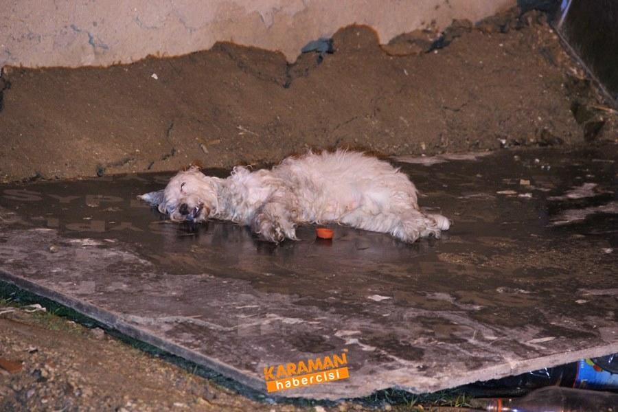 Karaman'da Ev Yangını 9
