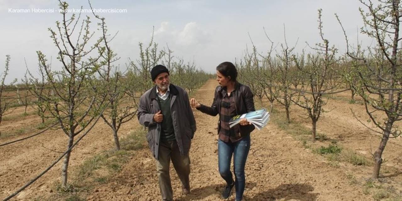 Karaman'da Merkez ve Köylerde Bahçe Kontrolü