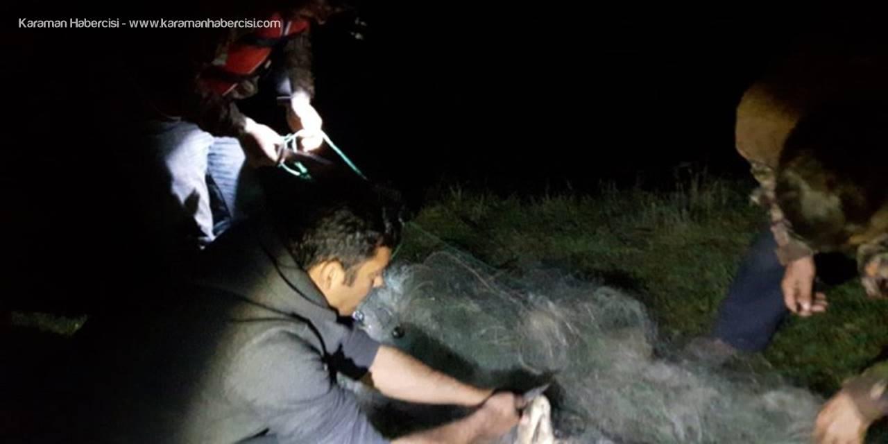 Konya'da Ağlardan Kurtarılan Balıklar Suya Bırakıldı
