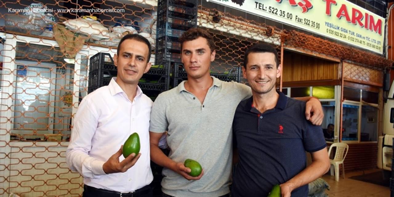 Antalya'dan Polonya'ya Avokado İhracatı