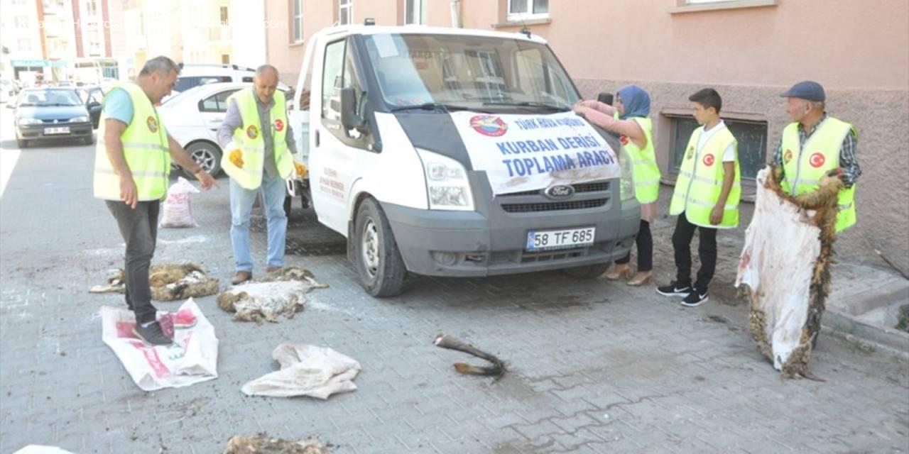 Suşehri'nde Thk'ye 342 Kurban Derisi Bağışlandı