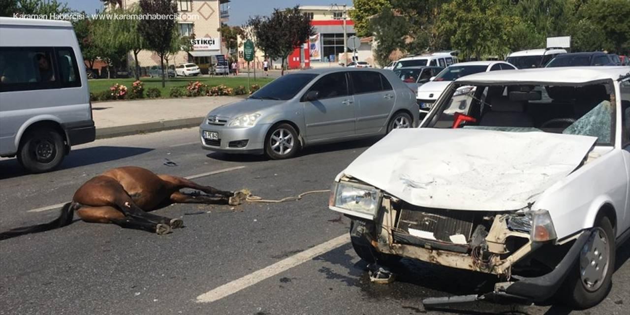 Eskişehir'de Otomobilin Çarptığı Başıboş İki At Telef Oldu