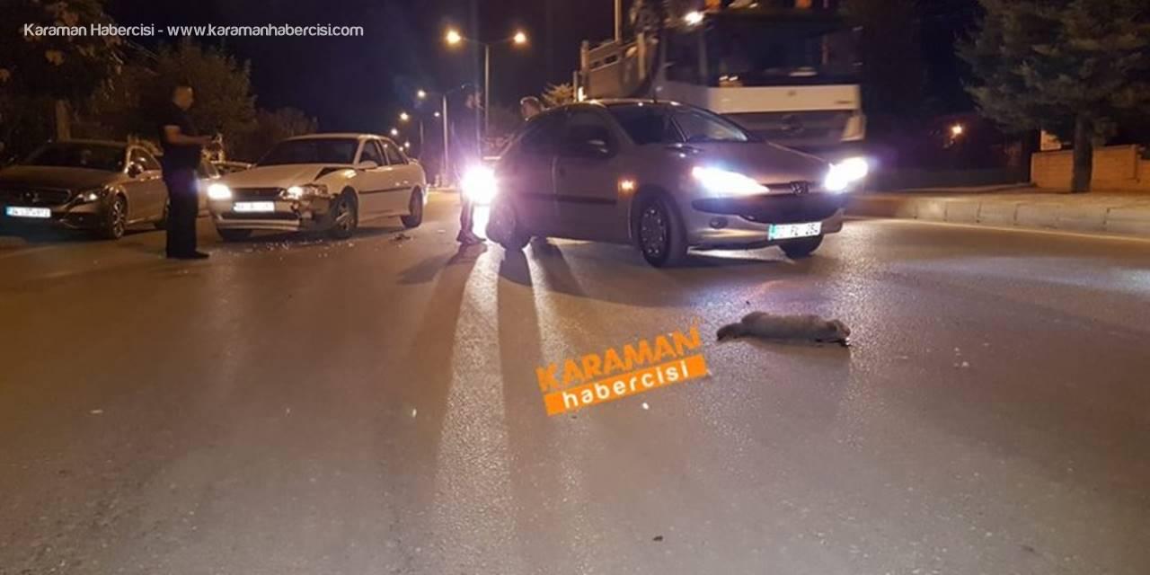 Karaman'da Kediye Çarpan Araç Kazaya Sebep Oldu