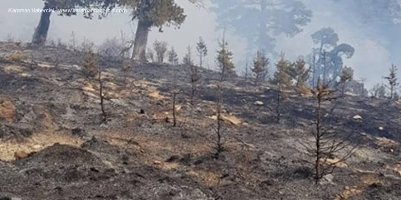 Mersin'in Mut İlçesinde Orman Yangını Çıktı