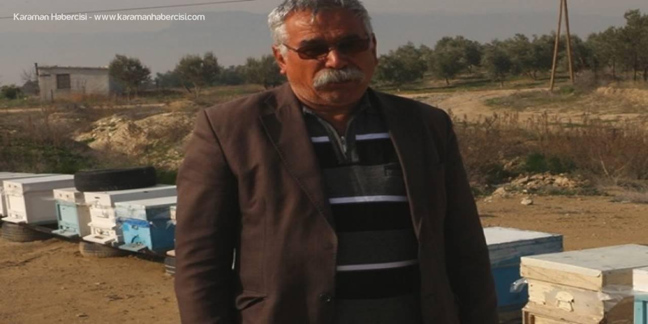 Bal Üreticiler Başkanı Kadir Cesur, Yöredeki Arı Hırsızlıklarının Önüne Geçemediklerini Söyledi