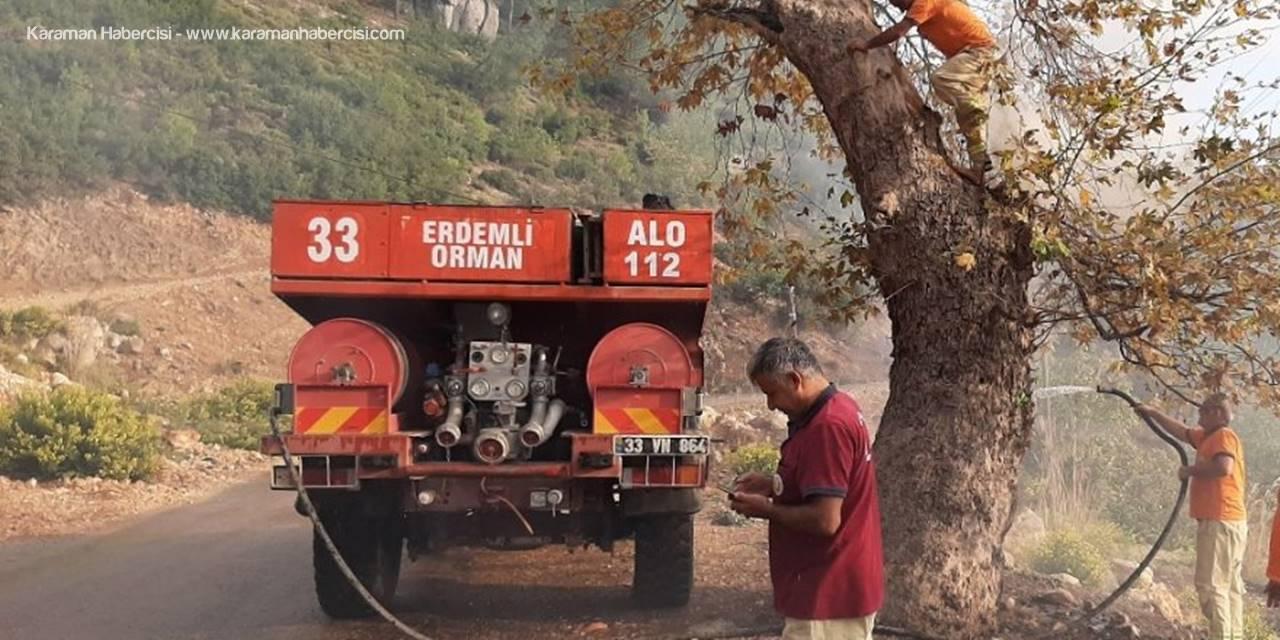 Piknikçilerin Kovuğuna Ateş Yaktığı Ağaca Orman Ekipleri Müdahale Etti