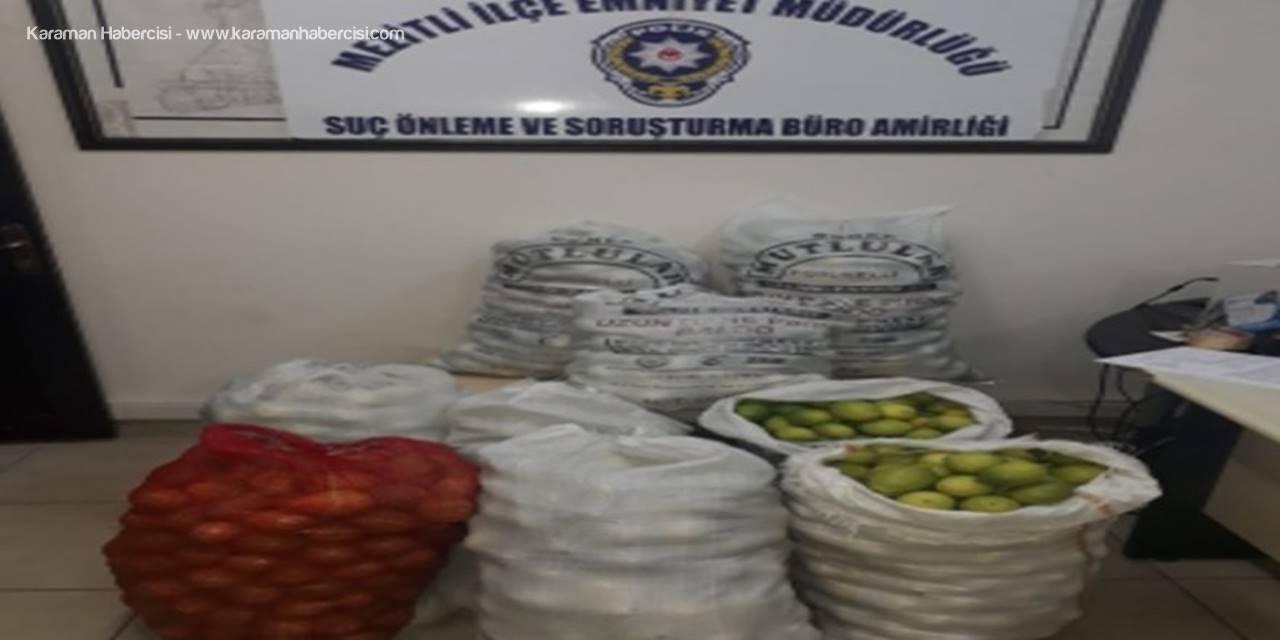 Limon Hırsızları Tutuklandı