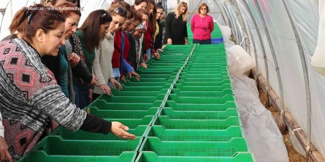 Mersin'de Kadınlara, 'Bahçecilik Alanı Ve Peyzaj Eğitimi'