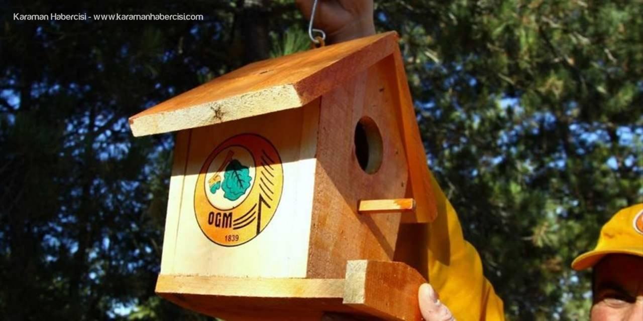 Eskişehir'de Kuşlar İçin Yuvalar Asıldı