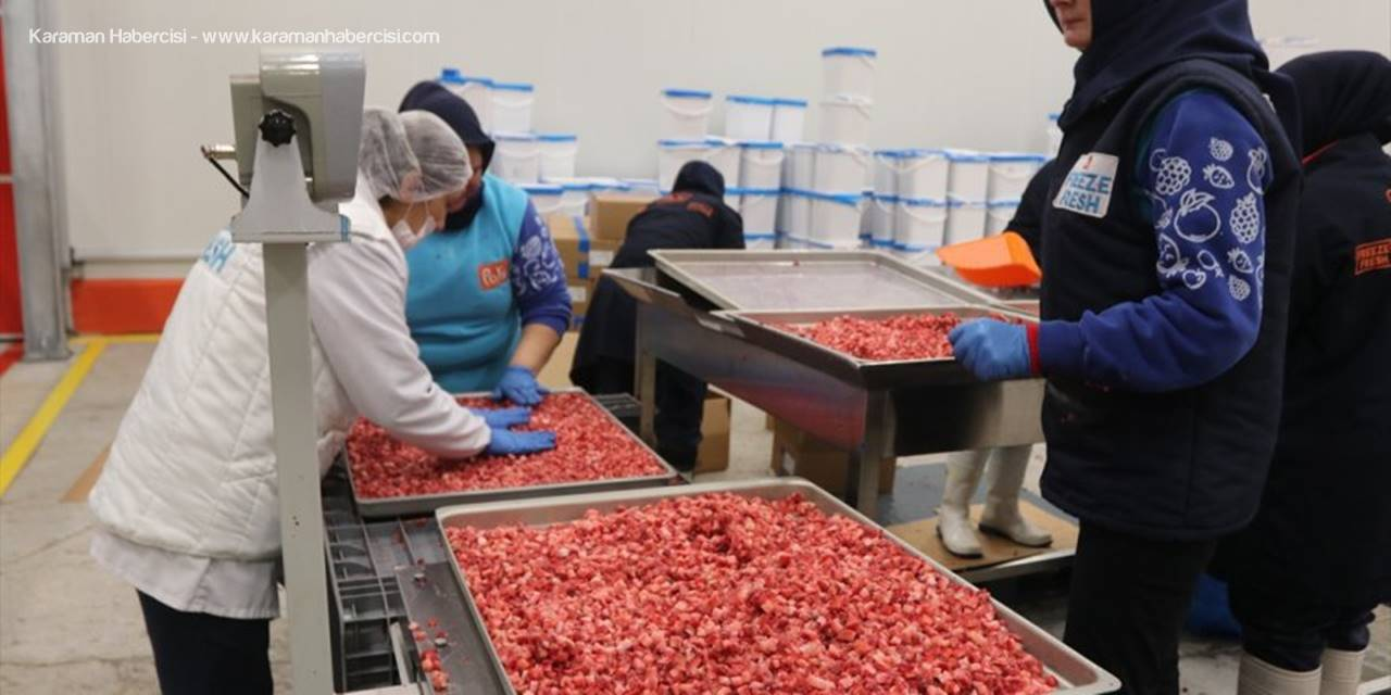 """Ermenek'te """"Meyve Kurutma Ve Dondurma Tesisi"""" Çiftçilere Umut Oldu"""