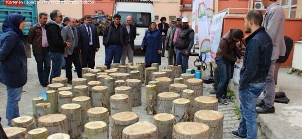 Karaman'da KOP Destekli Proje Çalışmaları Devam Ediyor