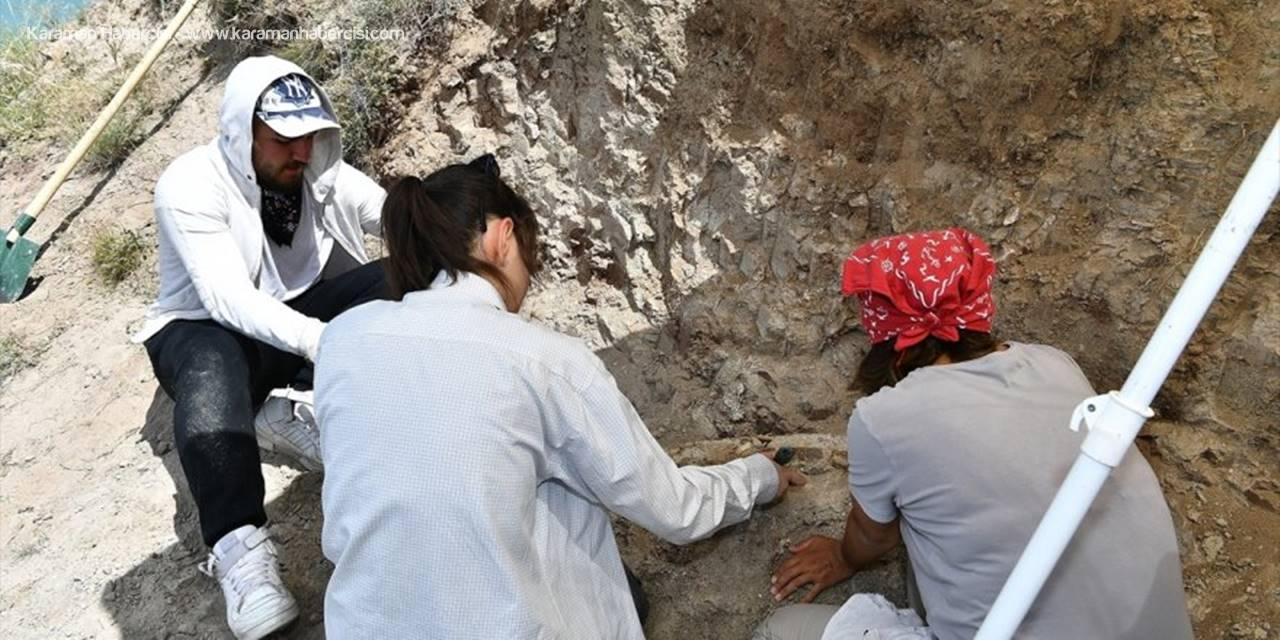 Kayseri'de Fosil Bulunan Alandı Kazı Çalışmaları Yeniden Başladı