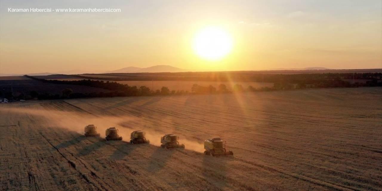 Türkiye'nin Tahıl Ambarında Hububat Hasadı Yüzleri Güldürüyor
