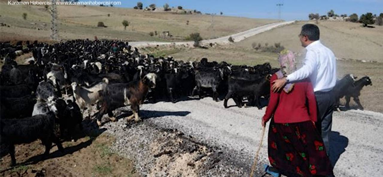 'Dünya Çiftçiler Günü Ve Anneler Günü Kutlu Olsun'