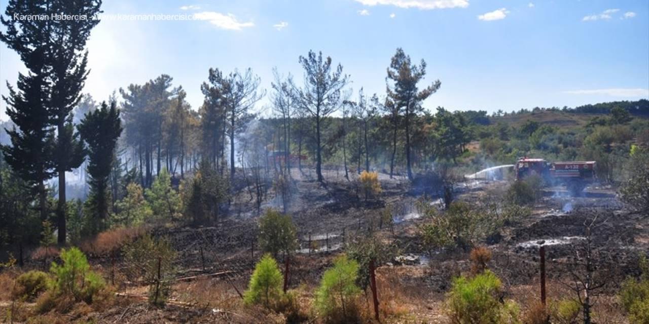 Antalya'da Çıkan Orman Yangını Söndürüldü