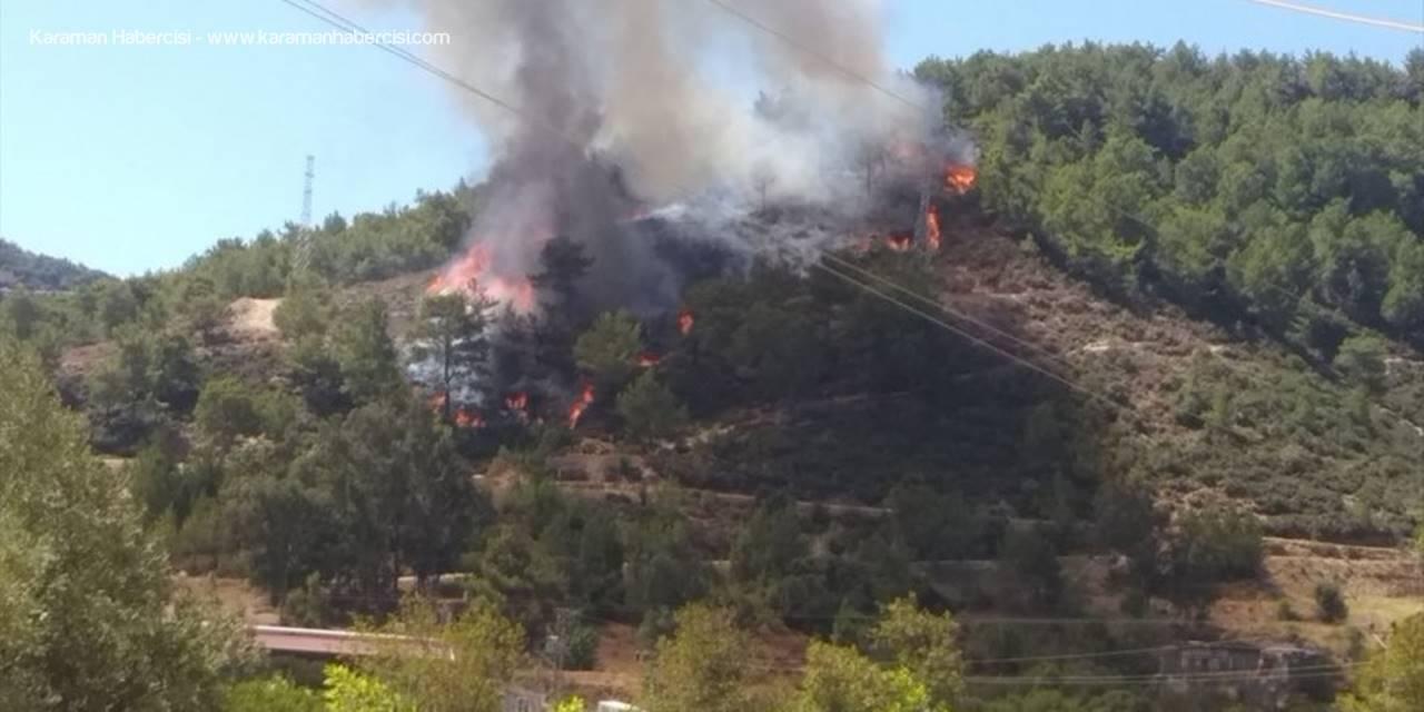 Mersin'de Çıkan Orman Yangını Söndürüldü