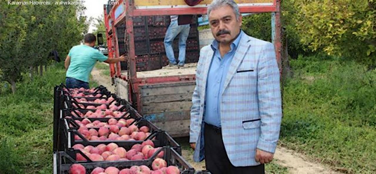 Karaman'da Elma Hasadı Buruk Başladı