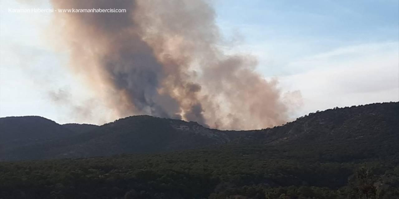 Ankara'da Çıkan Orman Yangınına Müdahale Ediliyor