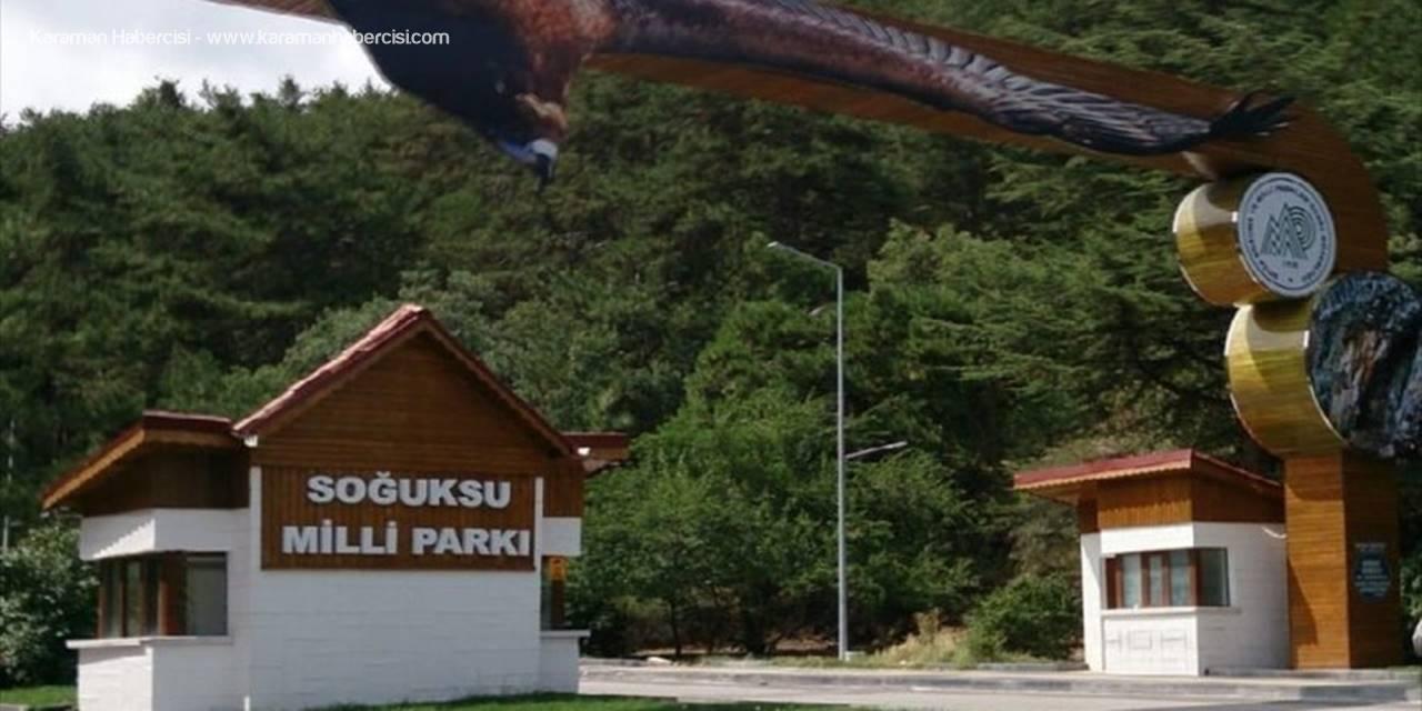 Soğuksu Milli Parkı'ndaki Yangın