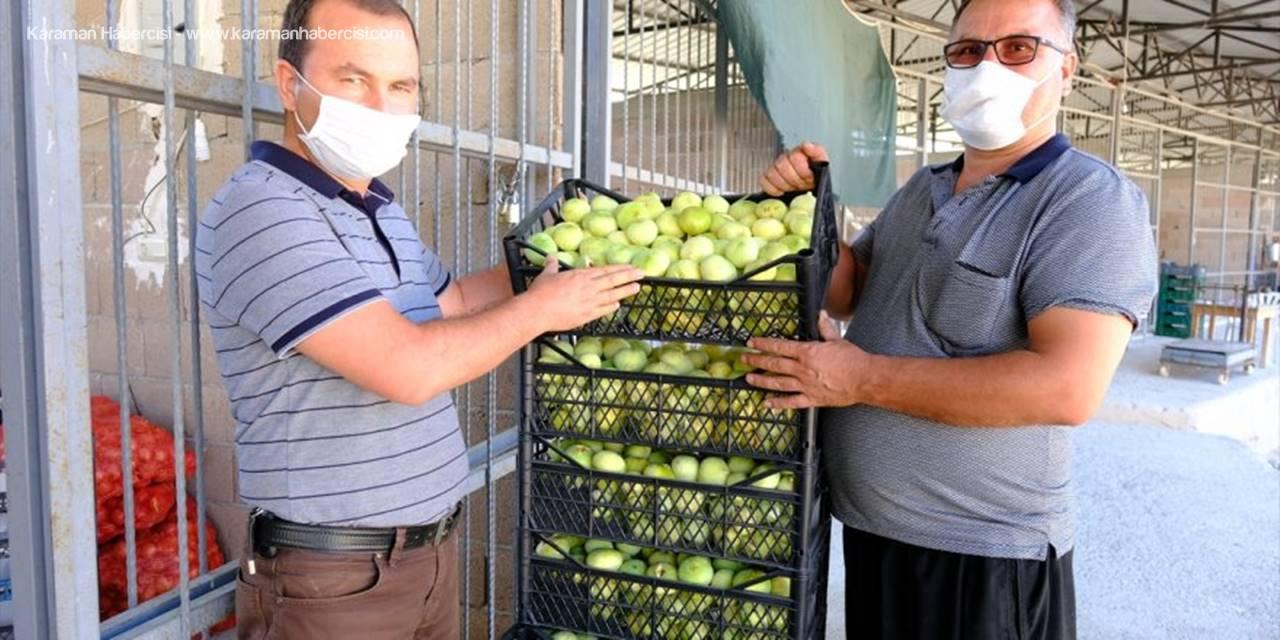 Mersin'de Beyaz İncir Üreticisinin Yüzünü Güldürüyor