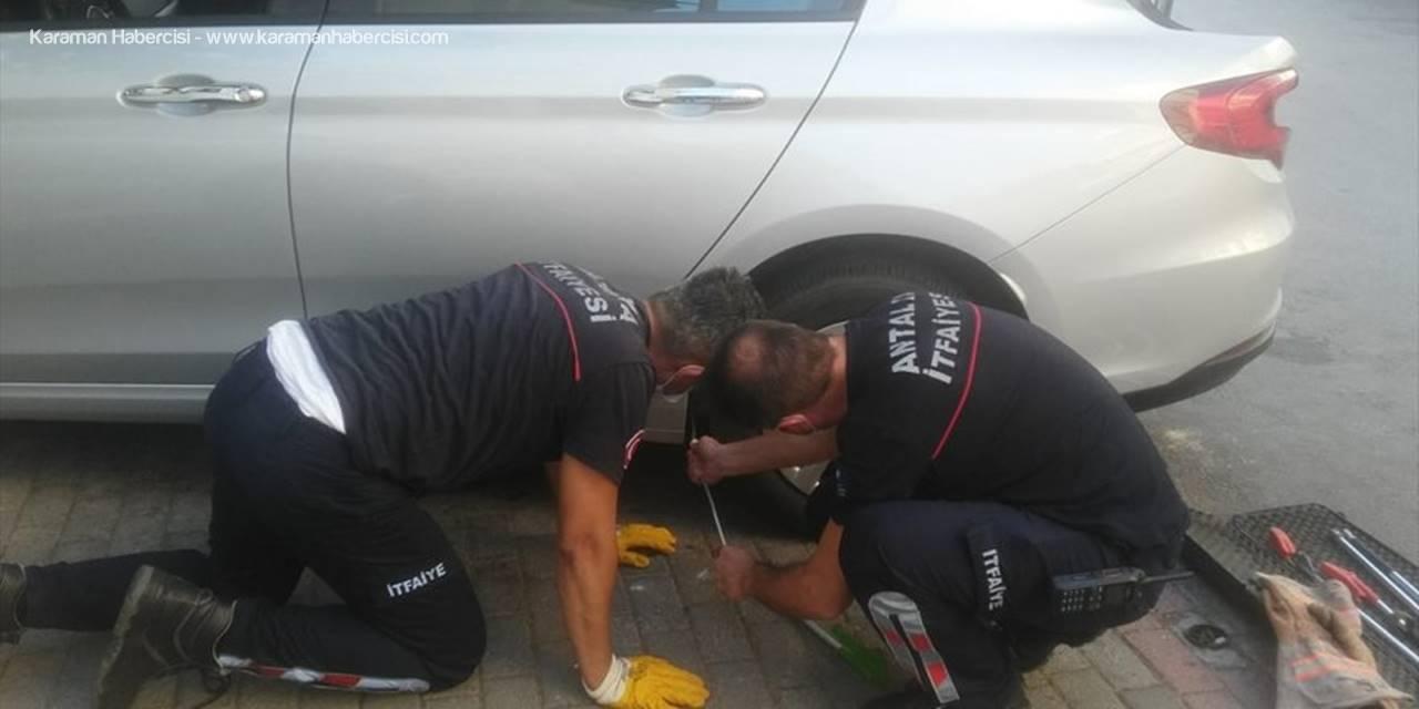Antalya'da Otomobile Sıkışan Kedi Kurtarıldı