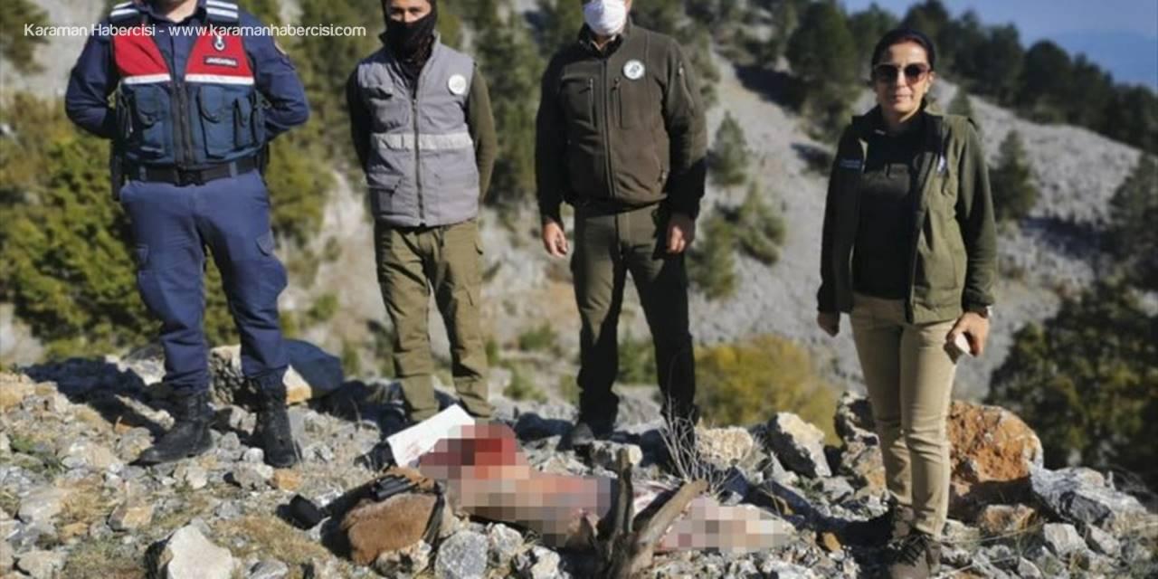 Mersin'de Kaçak Avlanan 5 Kişiye 43 Bin 483 Lira Ceza