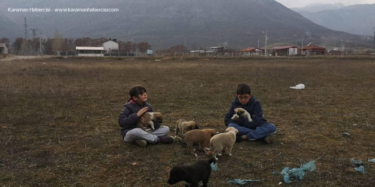 Annelerinin Doyuramadığı Yavru Köpeklere İki Küçük Kardeş Sahip Çıktı
