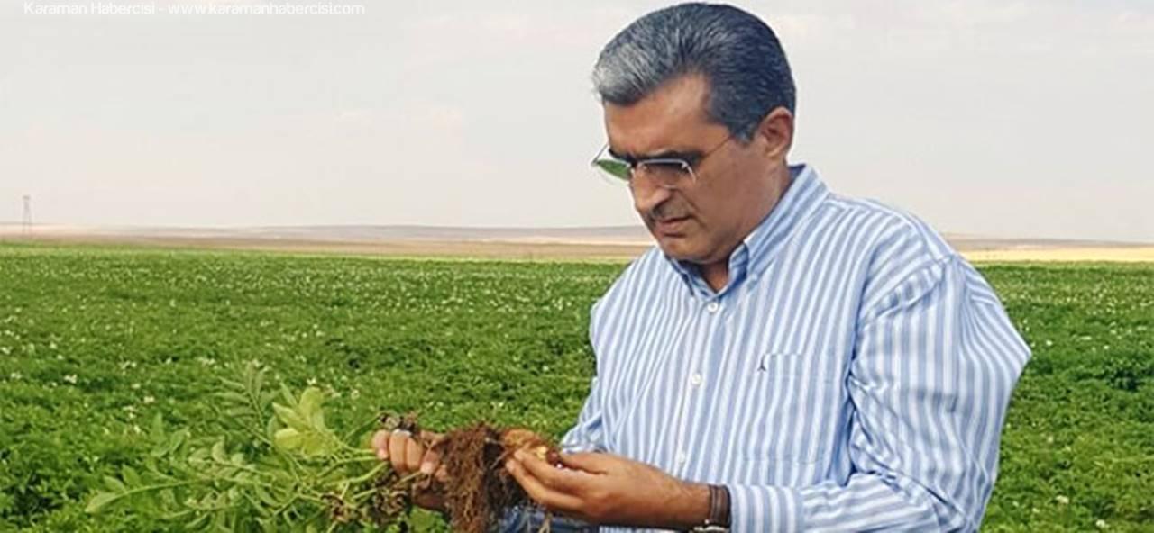 Çiftçinin Güvencesi 'Konya Şeker'