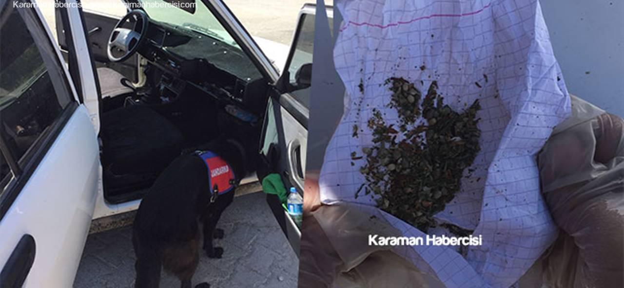 Jandarma'dan Karaman'da Uyuşturucu Mesaisi