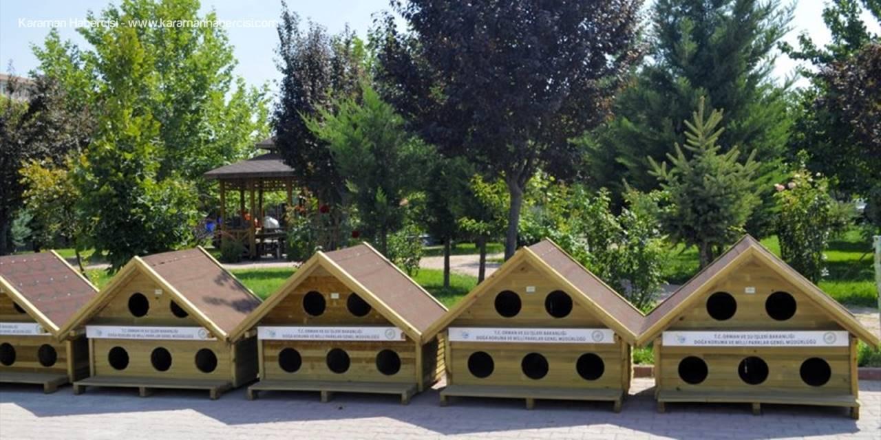 Konya'da Sokak Hayvanları İçin 130 Sıcak Yuva
