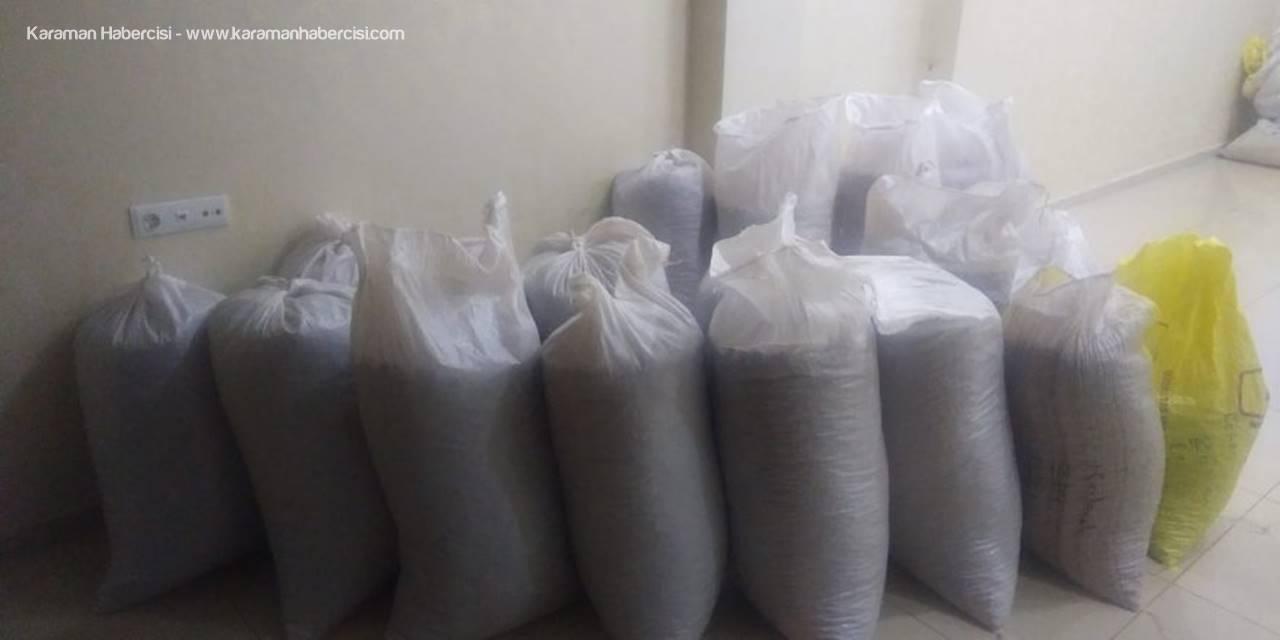 Mersin'de Fındık Hırsızları Yakalandı