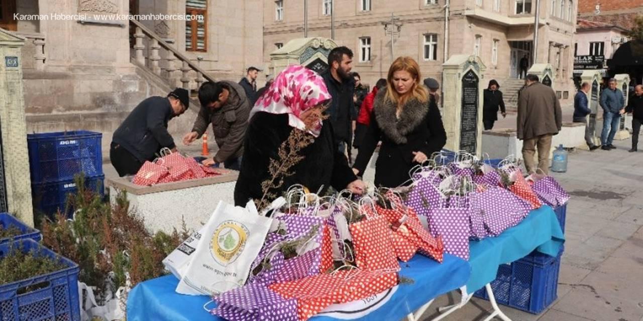 Aksaray'da Sevgililer Gününde Fidan Dağıtıldı