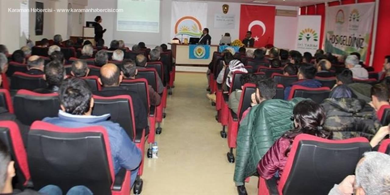 Karaman'da Akdeniz Meyve Sineği ve Mücadelesi Eğitim Toplantısı