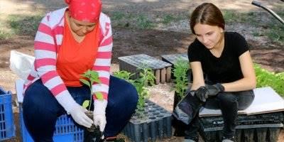 Türkiye'nin Yeşiline Üniversiteli Eller Değiyor