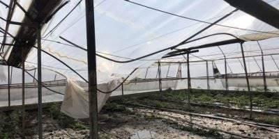 Kaş'ta Sağanak Yağış Seralara Zarar Verdi