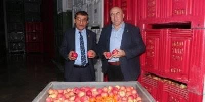 Karaman'da Elma Üreticisi Halinden Memnun mu?